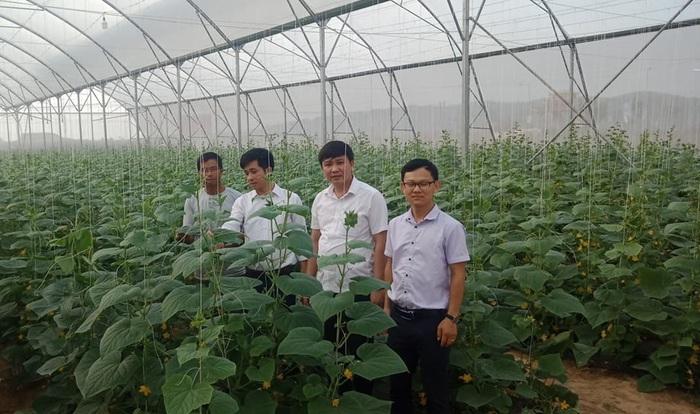 Xã Trí Yên (Bắc Giang) về đích nông thôn mới năm 2020 - Ảnh 1.