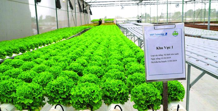 Nông nghiệp thông minh Lời giải cho bài toán năng xuất – chất lượng – hiệu quả của sản xuất nông nghiệp Việt Nam  - Ảnh 4.