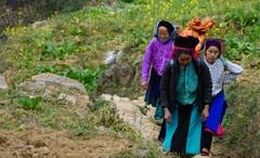 Bức tranh đời sống xã hội huyện Đồng Văn khởi sắc