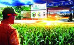 Những khía cạnh cần lưu tâm trong nông nghiệp thông minh