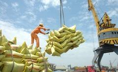 Xuất khẩu gạo hưởng lợi từ Hiệp định EVFTA