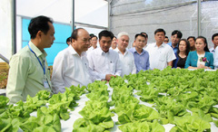 Bình Phước hướng đến địa phương tiên phong về phát triển nông nghiệp công nghệ cao