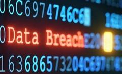 5 triệu người dân Bulgary bị đánh cắp dữ liệu tài chính
