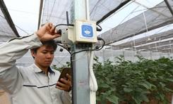ONE FARM - Giải pháp chuyển đổi số trong nông nghiệp nhận thêm giải thưởng