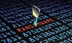 Microsoft cảnh báo các cuộc tấn công bằng mã độc PonyFinal