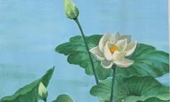 Butta tặng 108 bức tranh Sen tri ân người yêu mến Phật giáo